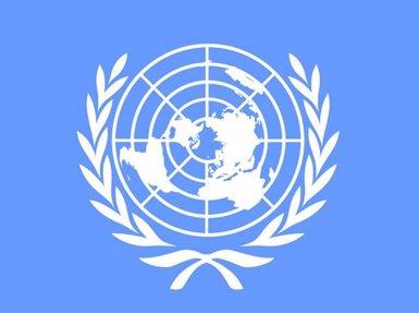 L'Assemblea General de l'ONU condemna Israel per un ús excessiu de la força contra els palestins (Pròxim Orient) (ONU - Archivo)