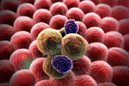 Éxito del ensayo clínico de un fármaco en pacientes con un tipo de cáncer de mama metastásico
