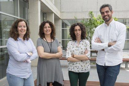 La UJI probará en nueve hospitales de Cataluña la efectividad de una app para el control del dolor crónico