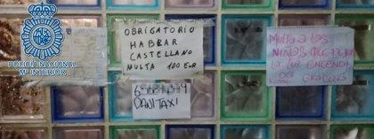 Liberadas siete mujeres en Sevilla supuestamente obligadas a prostituirse