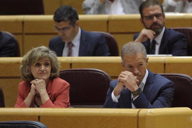 María Luisa Carcedo y Ander Gil en el Pleno del Senado