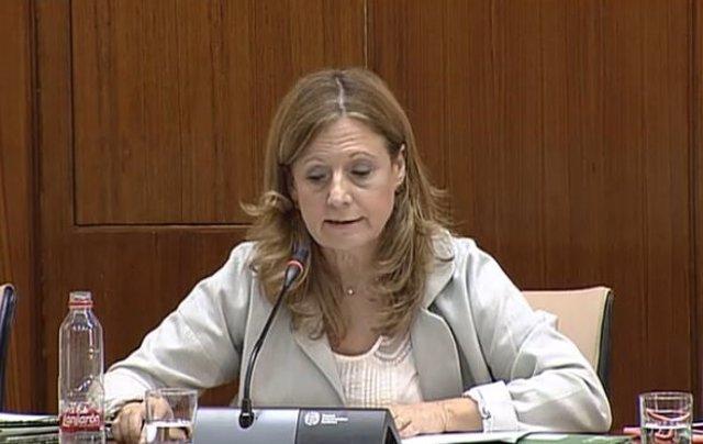 La consejera de Salud en comisión parlamentaria