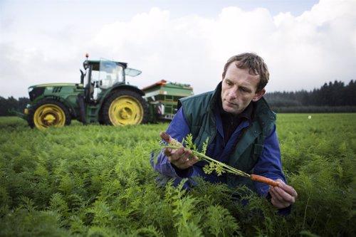 Campo de agricultura sostenible