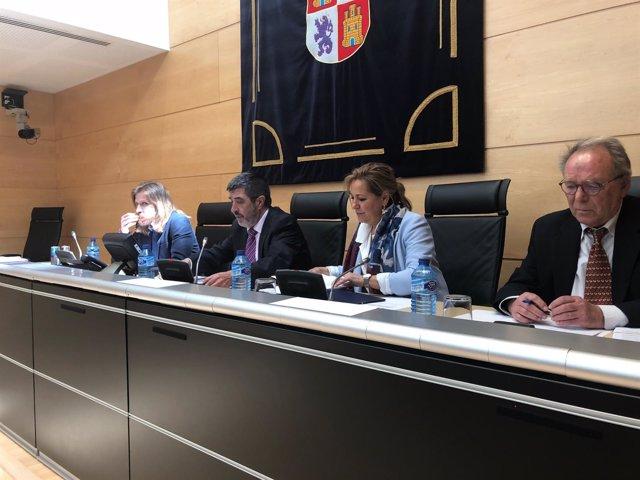 Valladolid. Comparecencia Cajas Rosa Valdeón