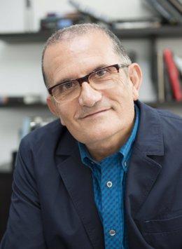 El director del IVAM, José Miguel G. Cortés