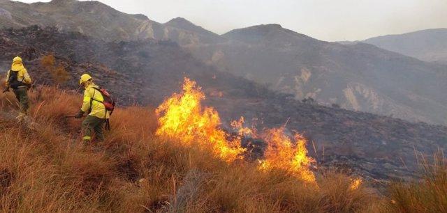 Bomberos forestales trabajan en el incendio de Rioja