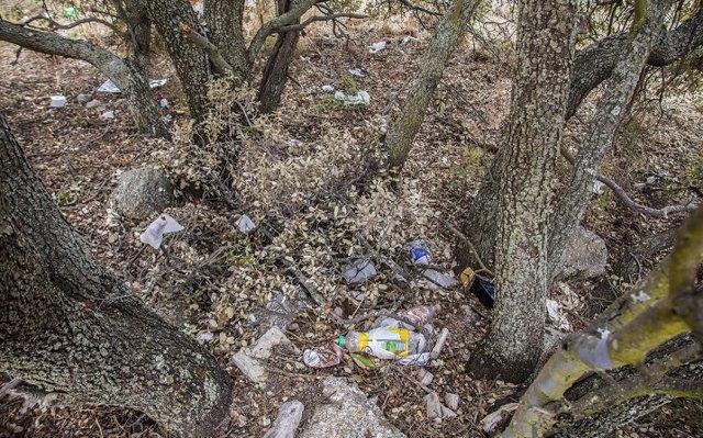 Decenas de familias se suman en Madrid a la gran batida de limpieza de los entornos naturales a nivel nacional