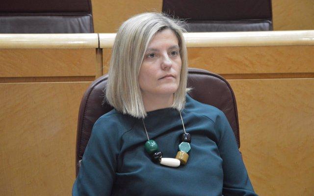 La altoaragonesa Begoña Nasarre, nueva secretaria general del Grupo del PSOE en el Senado