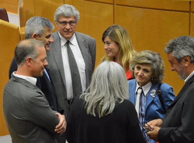 Dirección del Grupo Socialista del Senado, con Ander Gil y María Luisa Carcedo