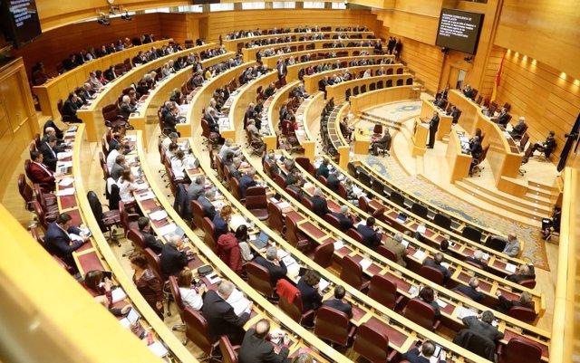 El Senado abre la puerta a ampliar las concesiones de nacionalidad por lagunas de la Ley de Memoria Histórica