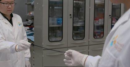 Crean una piel electrónica que se estira hasta nuevos límites