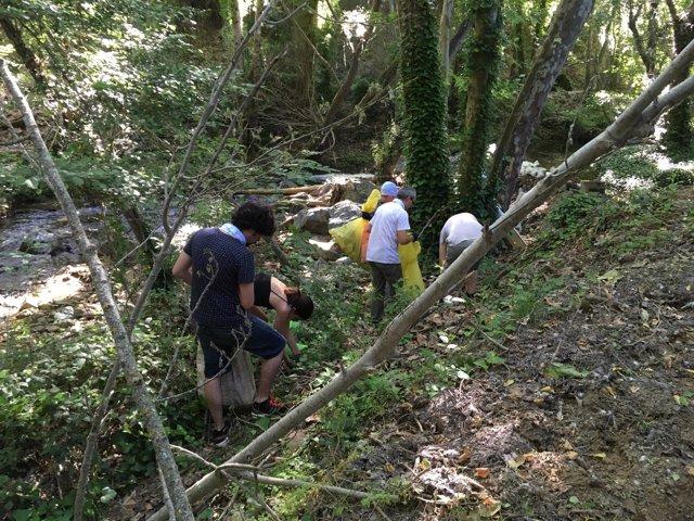 Retirada de basura y plásticos en La Nava.