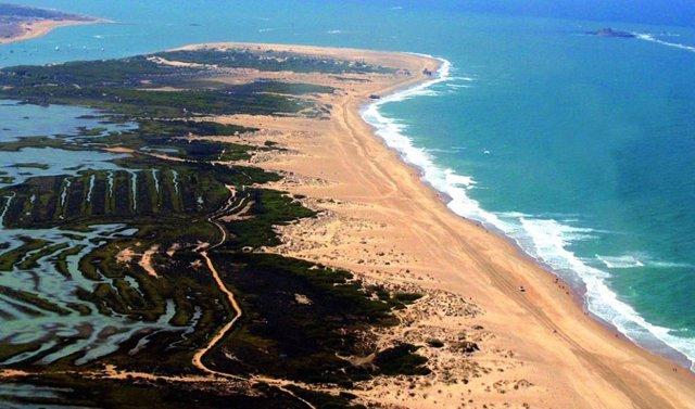 Vista aérea del Parque Natural de la Bahía de Cádiz