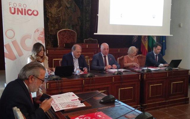 El presidente de la Diputación de Córdoba avanza al Consejo de Alcaldes las próximas líneas de inversión en municipios