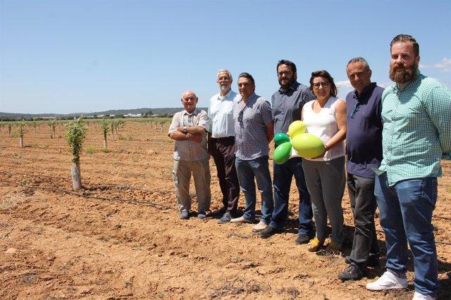 Vidal y Busquets presentan las ayudas a la replantación de árboles