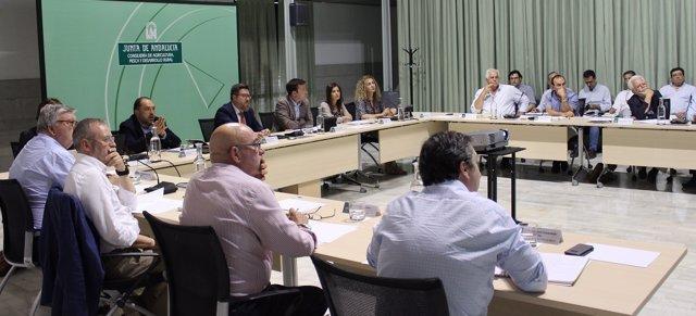 Reunión de la Mesa de Interlocución Agraria de la PAC