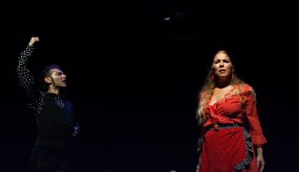 La Diputación de Cádiz lleva once actividades culturales a localidades de la provincia hasta final de mes