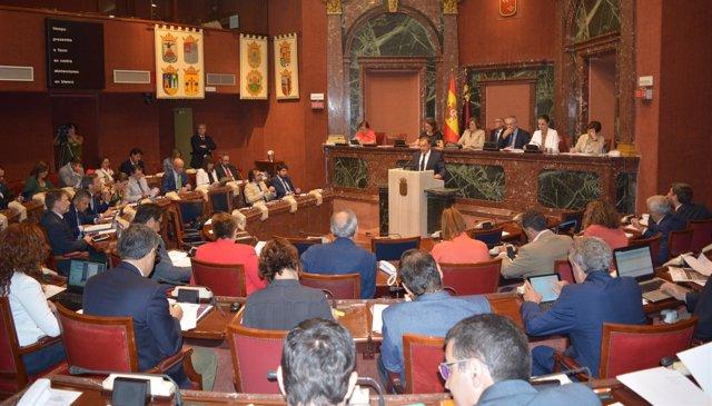 Diputados y el consejero Valverde en la Asamblea Regional