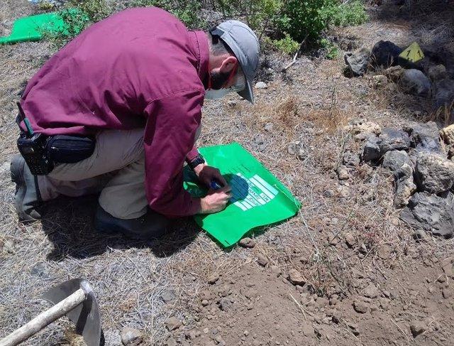 Investigan 47 incidentes relacionados con el uso de venenos en el medio rural de Tenerife