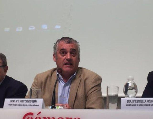 El consejero de Empleo. Javier Carnero.