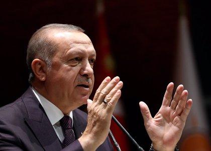 Turquía defiende su decisión de impedir la entrada al país a dos observadores electorales europeos