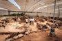 El Gobierno de Canarias insiste en el impulso del patrimonio cultural de las islas como oferta turística complementaria
