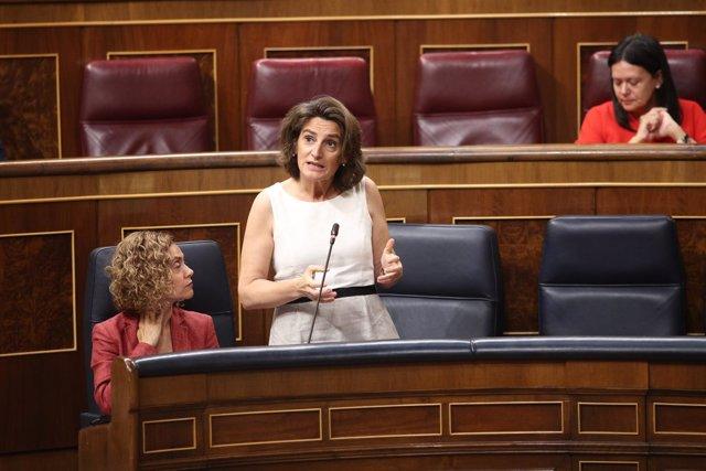 Teresa Ribera en la sesión de control al Gobierno en el Congreso