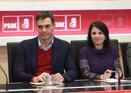 El PSOE, a la espera de que Interior decida si reforma la 'Ley mordaza' o deja el trabajo al Congreso