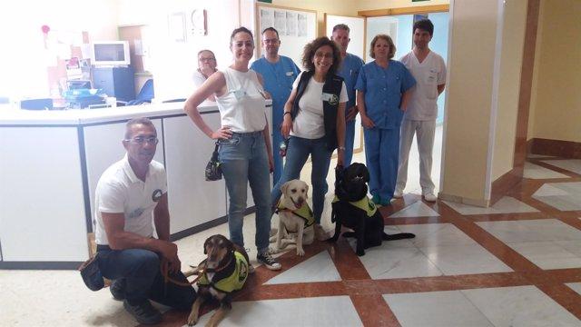 Unidad canina del Hospital de Puerto Real