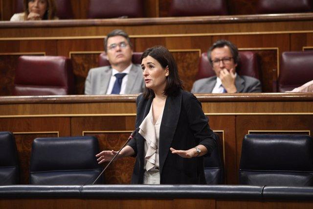 Carmen Montón en la sesión de control al Gobierno en el Congreso