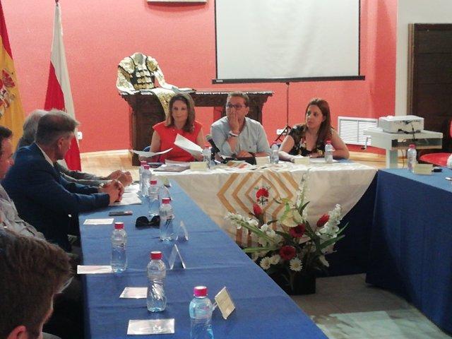 Ana Cobo, en la presentación de la Memoria Taurina