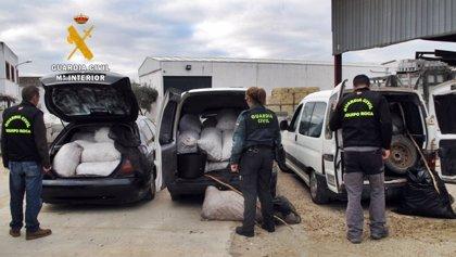 La Guardia Civil de Badajoz crea dos nuevos equipos ROCA en la provincia