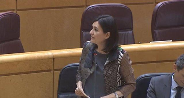 La ministra de Sanidad, Carmen Montón, en el Senado