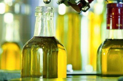 La producción final de aceite de oliva cierra con una caída del 3% hasta junio y los precios se elevan