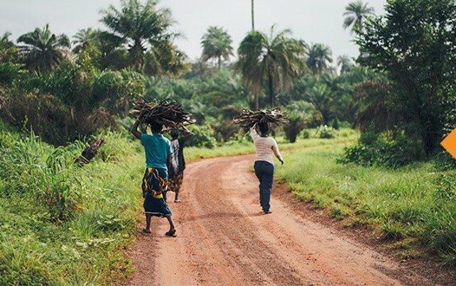 Mujeres africanas caminan portando ramas sobre la cabeza