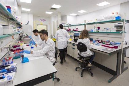 Hallan 288 proteínas que se hallan en el esperma humano y que resultan claves para la formación del cigoto y del embrión