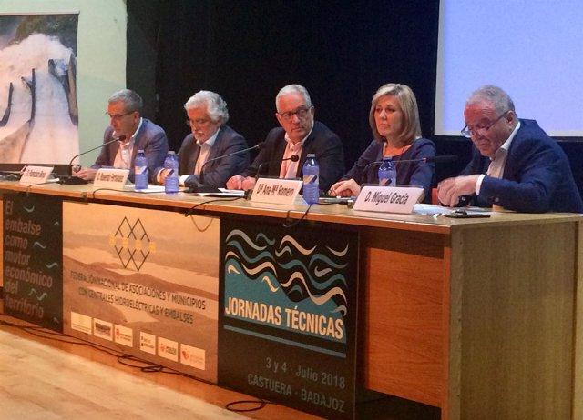 Foro de asociaciones y municipios con centrales hidroeléctricas y embalses