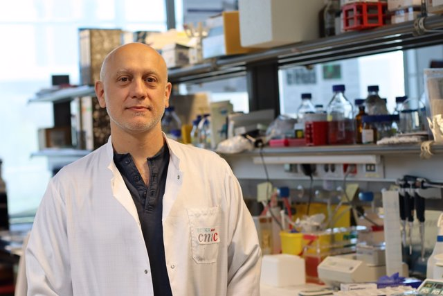 Andrés Hidalgo, del CNIC, de un proyecto sobre hematopoyesis clonal