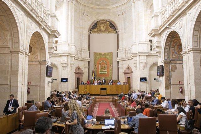 El Parlamento Andaluz Rechaza Tramitar Una Ley Del Pp A Para Reducir Los Tipos Del Tramo Autonomico Del Irpf