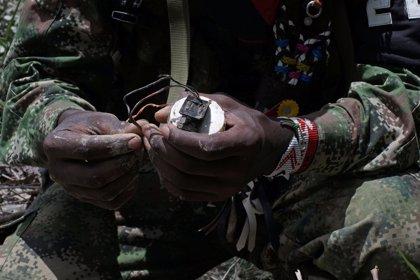 El ELN rechaza cualquier vinculación con el hallazgo de siete cadáveres acribillados a balas en Cauca