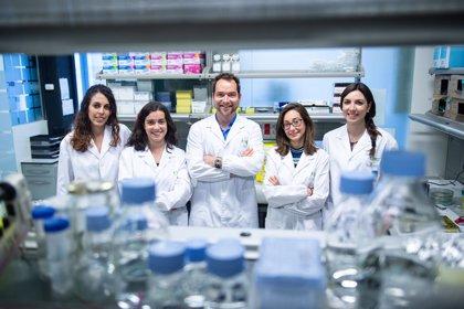 La Fundación BBVA ayuda a científicos españoles para investigar en imagen molecular y metabolismo