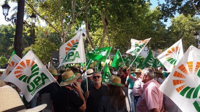 Protesta de UPA-UCE en Sevilla