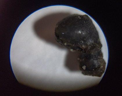 Éxito de la primera búsqueda intencional de meteoritos en el océano