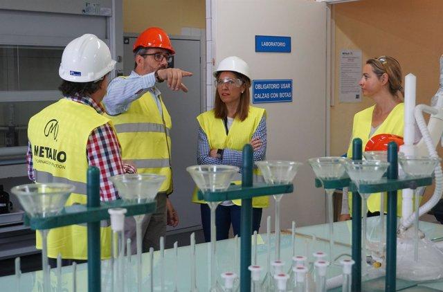 Visita de representantes institucionales a Metallo