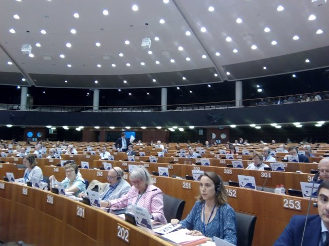 Comité de las Regiones, Cuca Gamarra