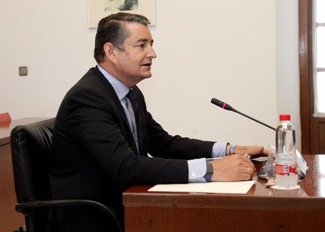 Antonio Sanz, este miércoles en el Parlamento andaluz