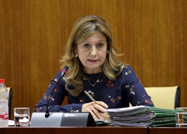 Marina Álvarez en la Comisión de Salud
