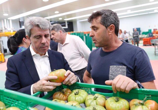 Exportaciones alimentarias en la Comunidad de Madrid