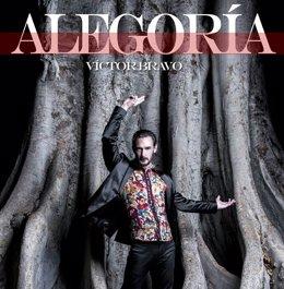 Cartel alegoría víctor bravo flamenco company teatro romano málaga
