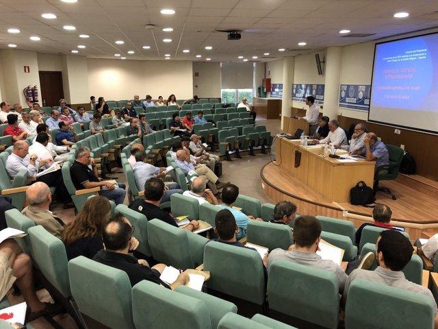 Asamblea extraordinaria Federación Española Rugby